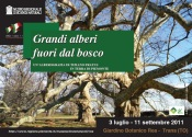 Mostre fotografiche di Tiziano Fratus - Giardino Botanico REA di Trana / MRSN di Torino, 2011