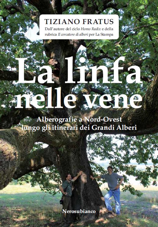 La linfa nelle vene - Cuneo, November 2012