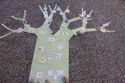 """""""Ci vuole un albero"""" a Borghetto Santo Spirito, 17 luglio 2012 - Un nuovo albero è cresciuto"""