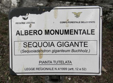 Sequoie d'Italia ~ Cartello di tutela, sequoie di frazione Allegrezze, Val d'Aveto (GE).