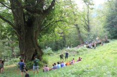 Ci vuole un albero! A Melle, Les MontagnArts 2012 - AI piedi del gigante