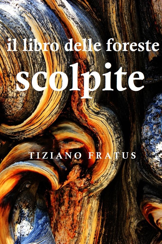 Il libro delle foreste scolpite_prova_2_redux