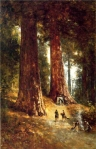 Thomas_Hill_XX__In_the_Redwoods_1894