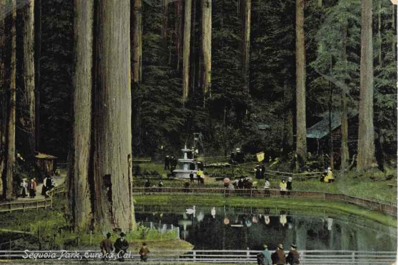 eureka_sequoiapark