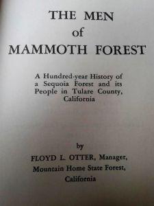 mammothforest_1