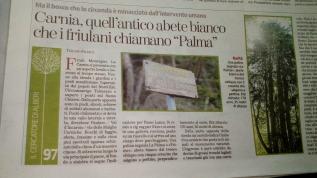 Oggi su °La Stampa° alla ricerca della Palma inCarnia