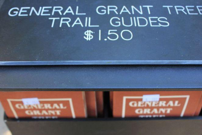 Arborgrammaticus ~ Titolo. Segui la carta. Luogo: General Grant Tree Grove, Kings Canyon National Park, California.