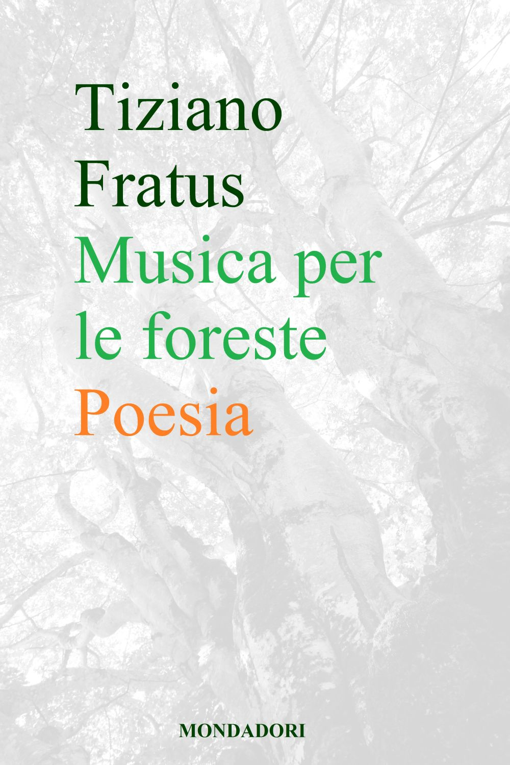 MUSICAPERLEFORESTE_PROVA0