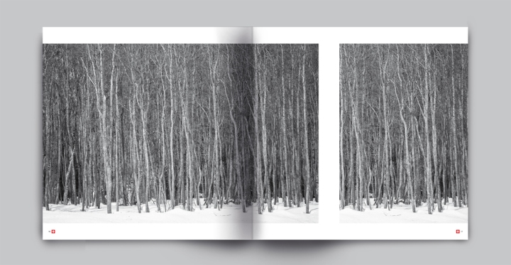 book+ENGADINA-4I