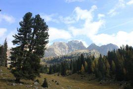 Titolo: Pacem in terris. Luogo: Foresta o Forcella di lerosa, Dolomiti ampezzane.
