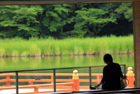 Titolo: Specchio d'acqua. Luogo: Tempio Interno di Ise, Giappone.