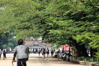 Arborgrammaticus ~ Titolo: Il ciclista. Luogo: Parco di Ueno, Tokyo.