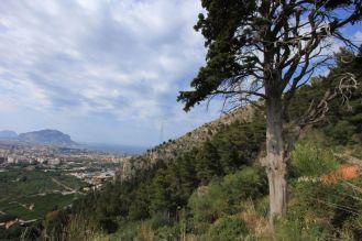 Titolo: L'eremita. Luogo: Monte Grifone, Palermo.