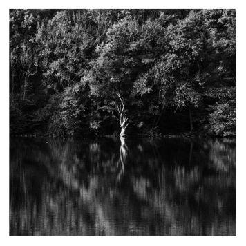 fratus_lago_pound_wh_redux