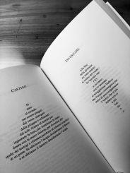 invernare_poesiecreaturali