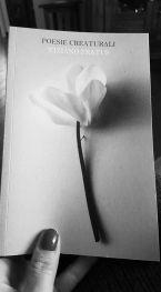 poesiecreaturali_palermo_2