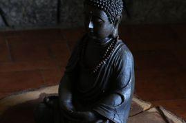 Sequoia-Buddha