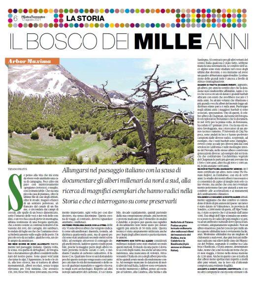 Il bosco dei mille anni, Il Manifesto